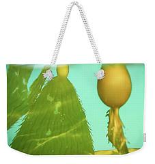 Kelp Weekender Tote Bag