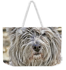 Weekender Tote Bag featuring the photograph Kelsey by Rhonda McDougall