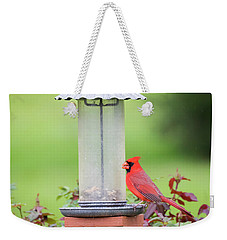 Weekender Tote Bag featuring the photograph Kentucky Cardinal  by Ricky L Jones