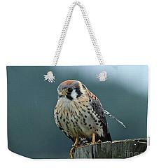 Weekender Tote Bag featuring the photograph Kestrel Hawk by Ann E Robson