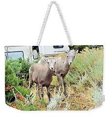 Kid Goats Weekender Tote Bag