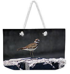 Killdeer Weekender Tote Bag by M Images Fine Art Photography and Artwork
