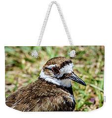 Killdeer Profile Weekender Tote Bag by Debra Martz