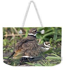 Killdeer With Chicks Weekender Tote Bag by Craig Strand