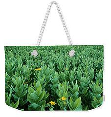 Kilpacker Basin Weekender Tote Bag