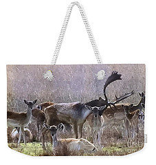 Kindred Spirits Weekender Tote Bag by Tlynn Brentnall