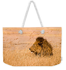 King Of The Pride Weekender Tote Bag by Adam Romanowicz