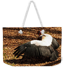 Weekender Tote Bag featuring the photograph King Vulture 2 Strutting by Chris Flees