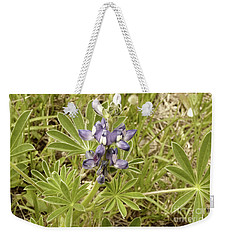 Weekender Tote Bag featuring the photograph Kings Park Wildflower by Cassandra Buckley