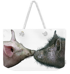 Kissing Pigs Weekender Tote Bag