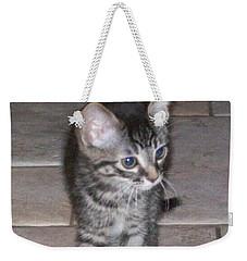 Martius Kitten Weekender Tote Bag