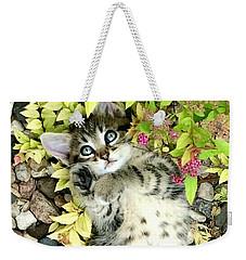 Kitten Dreams Weekender Tote Bag
