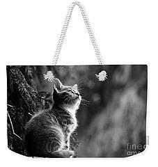 Kitten In The Tree Weekender Tote Bag