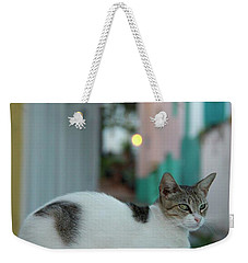Kitten Reflections Weekender Tote Bag
