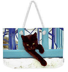 Kitten With Blue Rail Weekender Tote Bag
