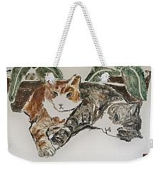 Kittens Weekender Tote Bag