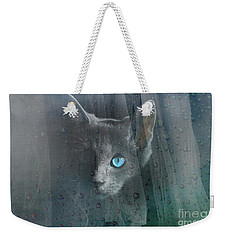 Weekender Tote Bag featuring the photograph Kitty At The Window by Chris Armytage