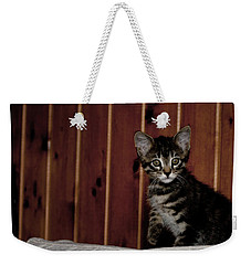 Weekender Tote Bag featuring the photograph Kitty by Laura Melis