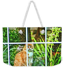 Kitty Reflections Weekender Tote Bag by Wendy McKennon