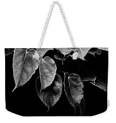 Weekender Tote Bag featuring the photograph Kiwi Leaves In Black And White by Ronda Broatch