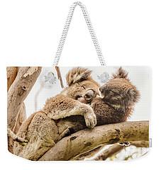 Koala 5 Weekender Tote Bag by Werner Padarin
