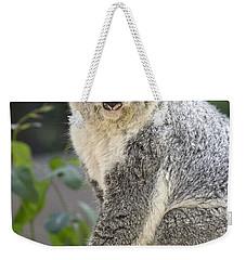 Koala Female Portrait Weekender Tote Bag by Jamie Pham