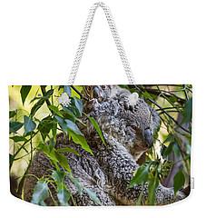 Koala Joey Weekender Tote Bag by Jamie Pham