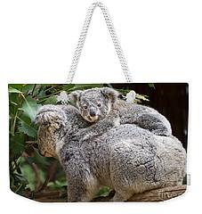Koala Joey Piggy Back Weekender Tote Bag by Jamie Pham