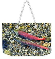 Weekender Tote Bag featuring the photograph Kokanee Salmon At Taylor Creek by David Lawson