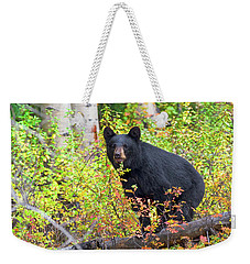 Fall Bear Weekender Tote Bag