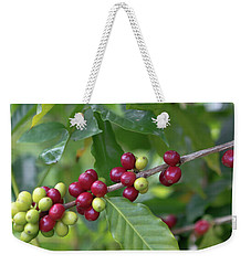 Weekender Tote Bag featuring the photograph Kona Coffee Cherries by Susan Rissi Tregoning