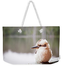 Weekender Tote Bag featuring the photograph Kookaburra by Ivy Ho