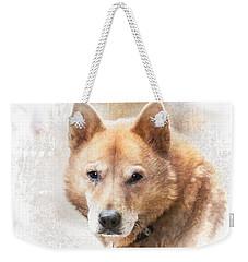 Korean Jindo Portrait Weekender Tote Bag by Eleanor Abramson