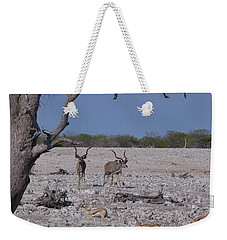 Weekender Tote Bag featuring the photograph Kudu And Springbok 2 by Ernie Echols