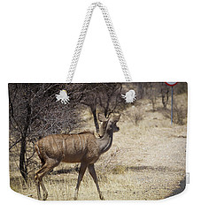 Weekender Tote Bag featuring the photograph Kudu Crossing by Ernie Echols