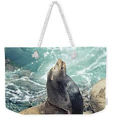 La Jolla Weekender Tote Bag