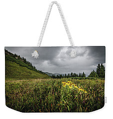 Weekender Tote Bag featuring the photograph La Plata Wildflowers by Margaret Pitcher