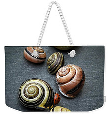 Lady Bug And Snail Shells 1 Weekender Tote Bag by Karen Stahlros