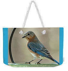 Ladybluebird Of Happiness Weekender Tote Bag