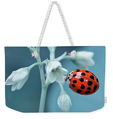 Weekender Tote Bag featuring the photograph Ladybug by Mark Fuller