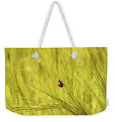 Ladybug In A Wheat Field Weekender Tote Bag by Yoel Koskas