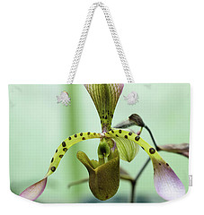 Weekender Tote Bag featuring the photograph Lady's Slipper Orchid by Cristina Stefan