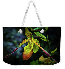 Weekender Tote Bag featuring the photograph Lady's Slipper by Richard Goldman