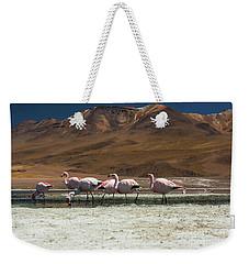 Laguna Colorada, Andes, Bolivia Weekender Tote Bag