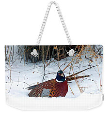 Weekender Tote Bag featuring the photograph Lake Country Pheasant 2 by Will Borden