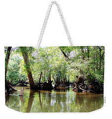 Weekender Tote Bag featuring the photograph Land Of The Lost by Debra Forand