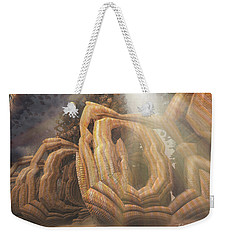 Weekender Tote Bag featuring the digital art Landed by Melissa Messick