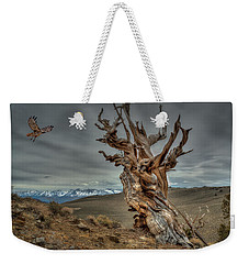 Landing On Bristlecone Pine Weekender Tote Bag