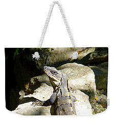 Weekender Tote Bag featuring the photograph Large Lizard M by Francesca Mackenney
