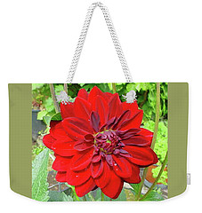 Weekender Tote Bag featuring the photograph Large Red Dahlia by Jay Milo